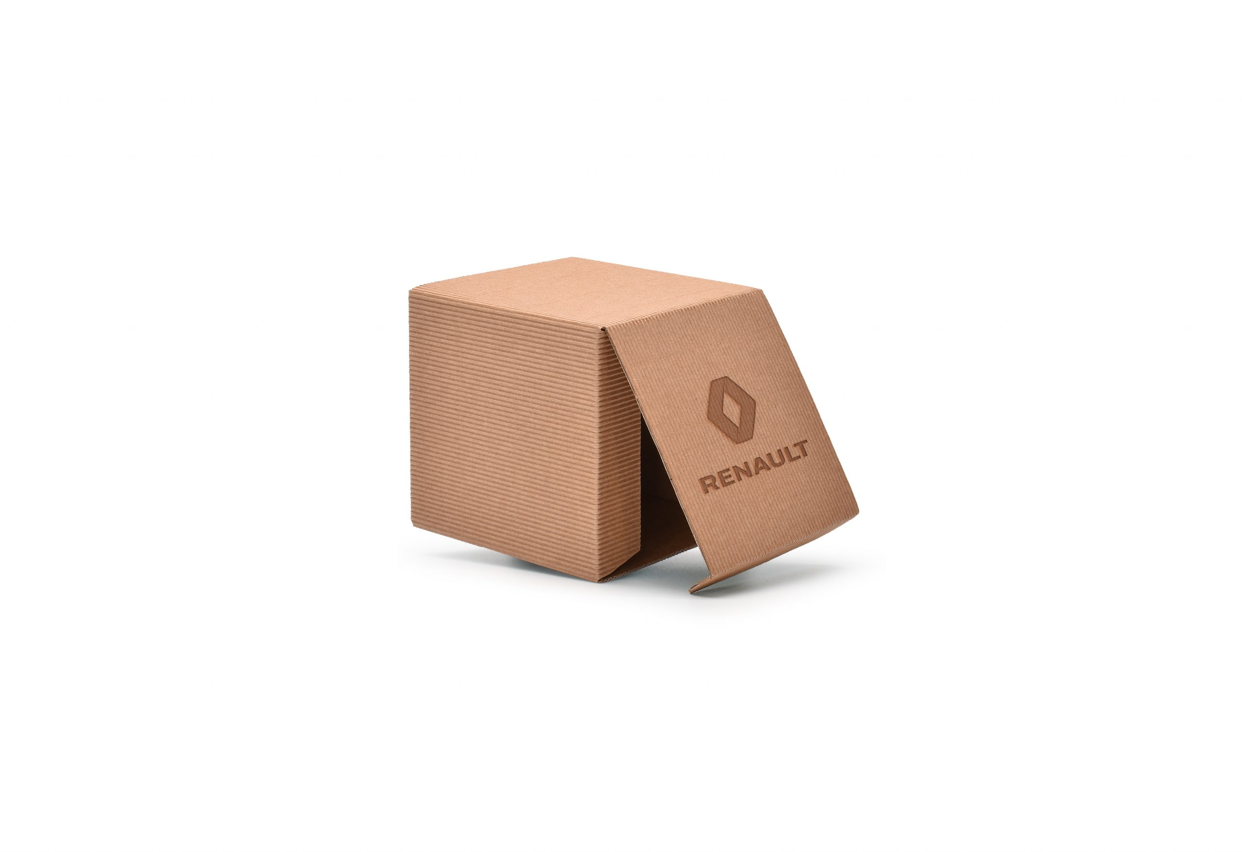 embalagem_logo_em_revelo_Renault